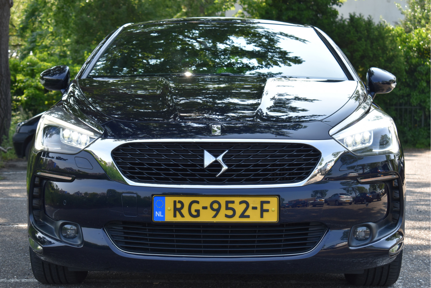 DS-DS 5-13